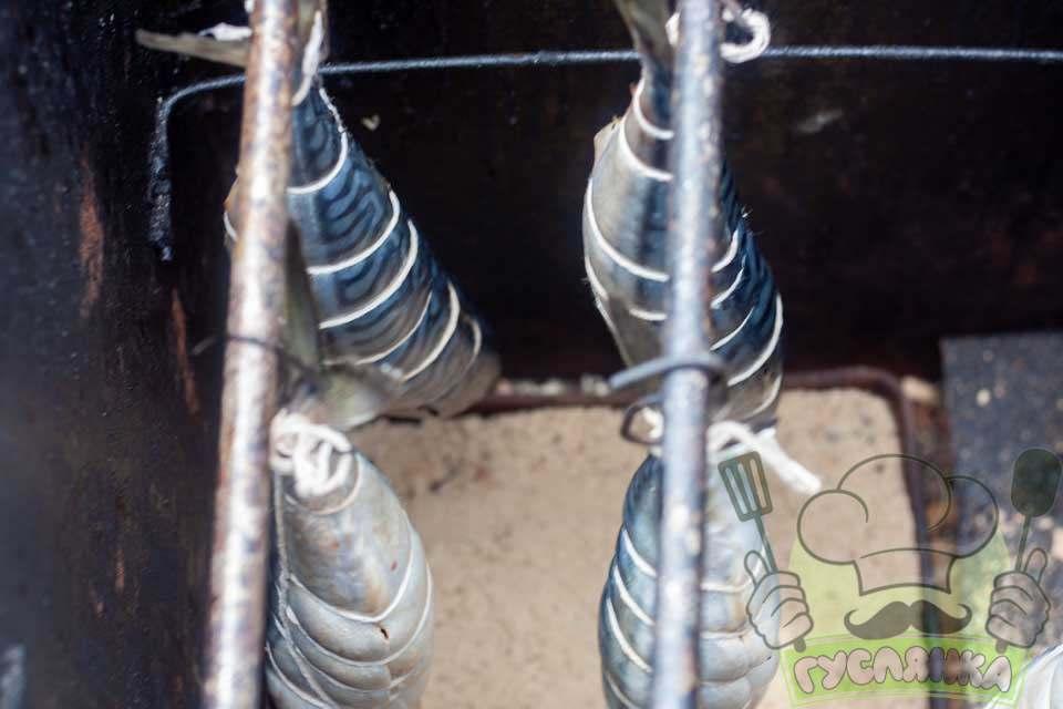 скумбрію підвішую в коптильні так, щоб риба не торкалася одна до одної